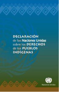 DECLARACION PUEBLOS INDIGENAS-page-001